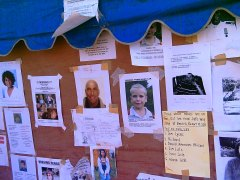 Relatives of the missing placed hundreds of photo's on make shift boarding erected by the Thai Authroites throughout south west Thailand in hope that someone may have information of their whereabouts